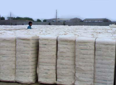 Raw Cotton Bales,Organic Raw Cotton Bales,Natural Raw Cotton